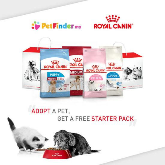 Petfinder Royal Canin Starter Pack Square Banner