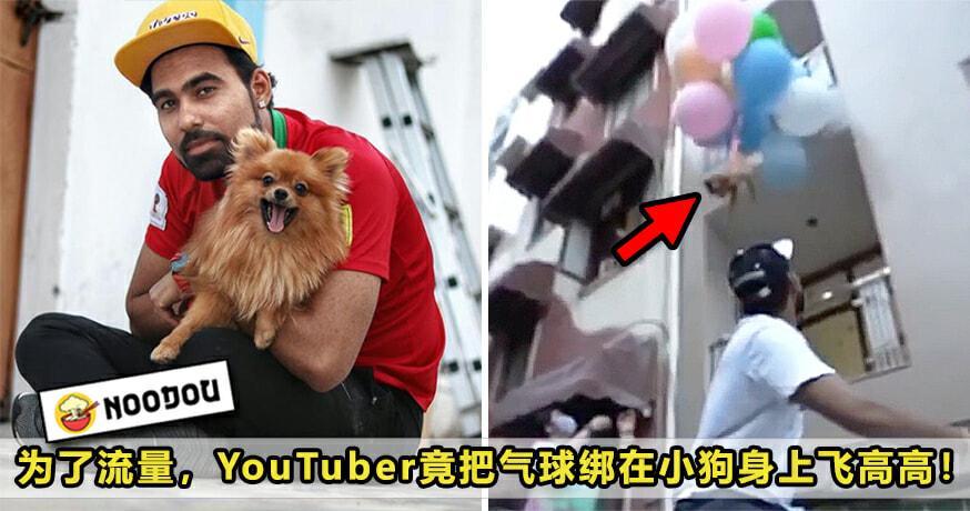 Dog Balloon Featured 2