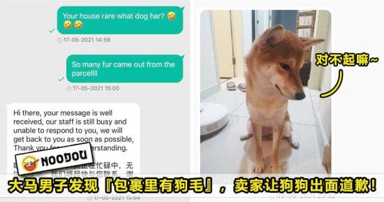 Dog Fur Parcel Featured