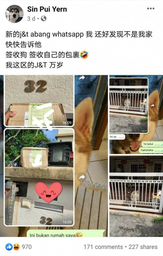 Husky Helps Owner To Get Parcel From Abang Delivery Rider
