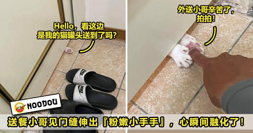 小猫伸爪 Ft Image V4