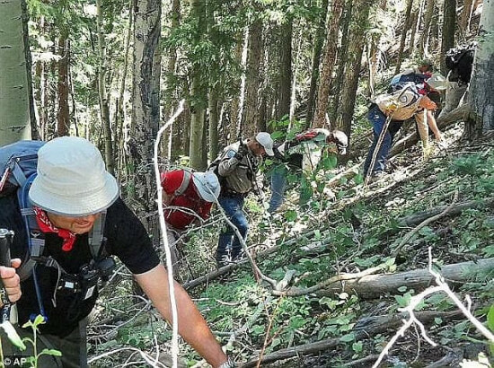 Dylan Redwine Found Forest