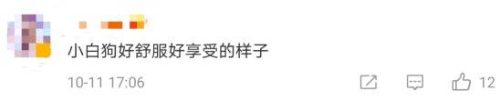 Screenshot 20211011 182646 Com.sina .weibo Mh1633948155542