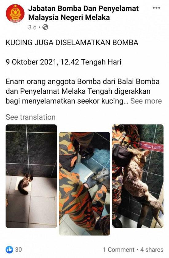 Screenshot 20211013 174611 Com.facebook.katana